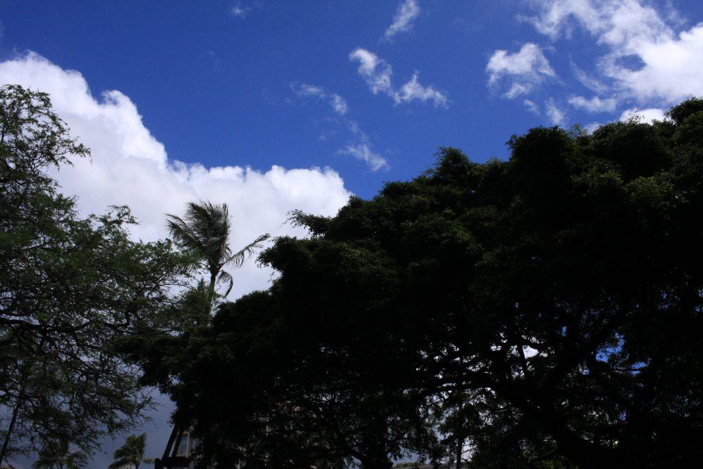 ハワイ大学の空
