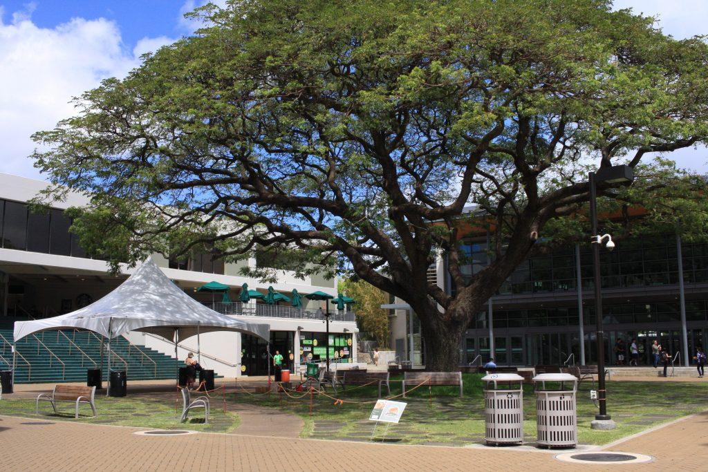 ハワイ大学のBook Storeの正面