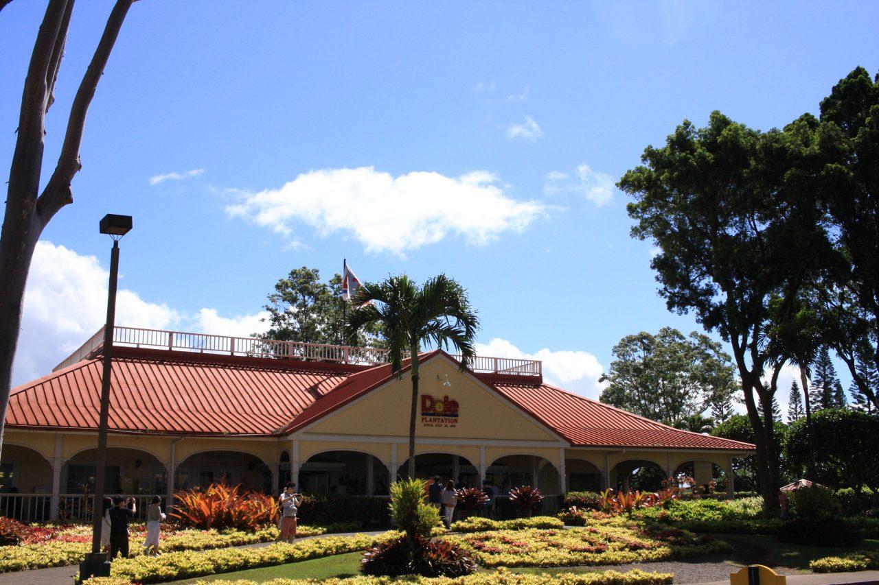『ドールプランテーション@ハワイ』でパイナップル狩り・迷路・パイナップルまみれになった1日【ハワイ旅行1日目】