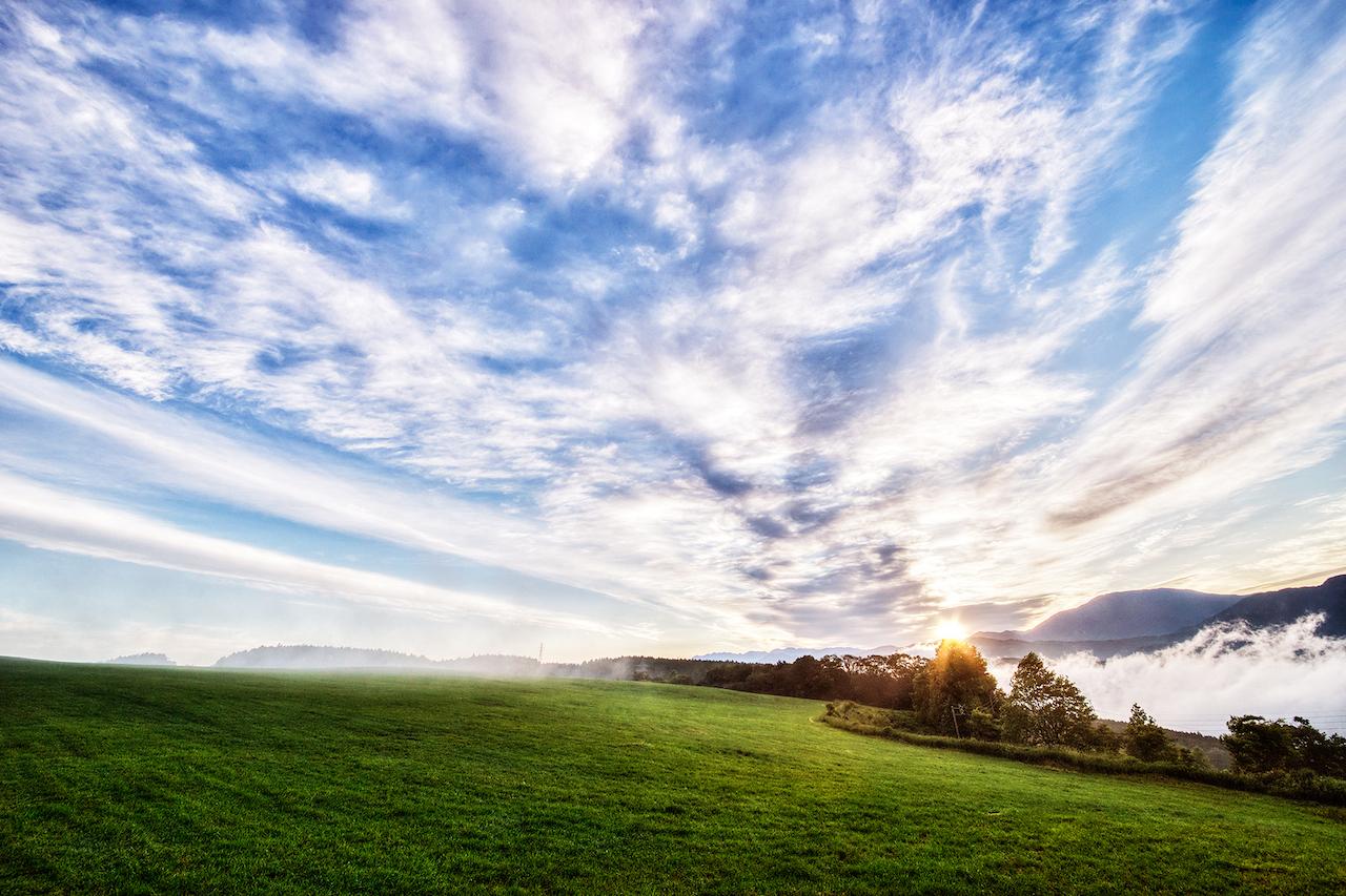 草原の夜明け