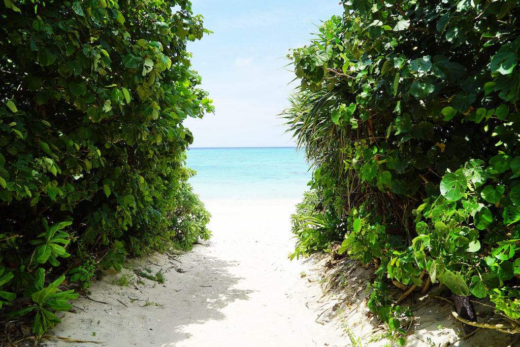 浜辺へ抜けるところ