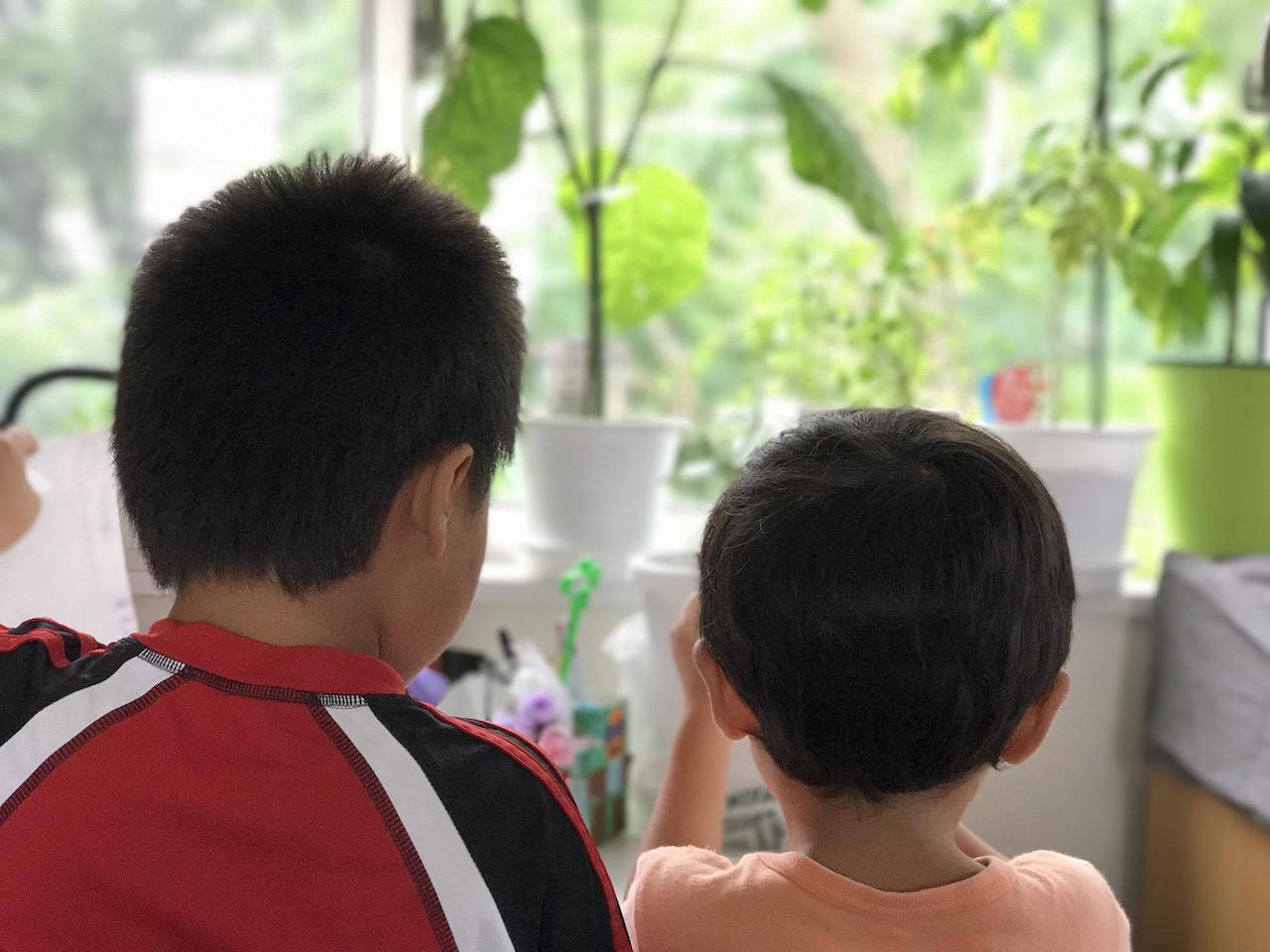 親離れできない子、子離れできない親、親と子の気持ちを分析とちょっとしたアドバイス
