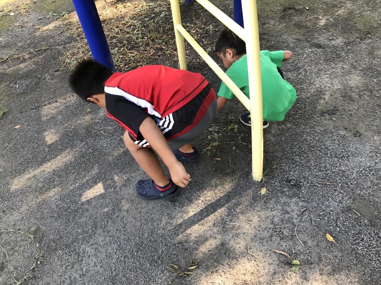 【結果報告&次の一手】息子達と自宅横の公園をきれいにする大作戦。自分達で掃除するだけじゃなくて、ゴミを捨てる人達を減らす方法を考える。