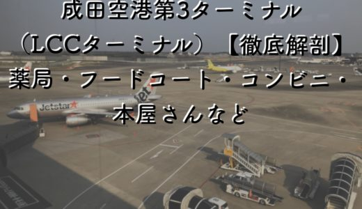 【徹底解剖】成田空港第3ターミナル(LCCターミナル)には何がある?