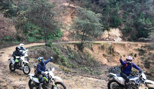 伊豆の上池林道で10年ぶりの森林とお戯れあそばされた。