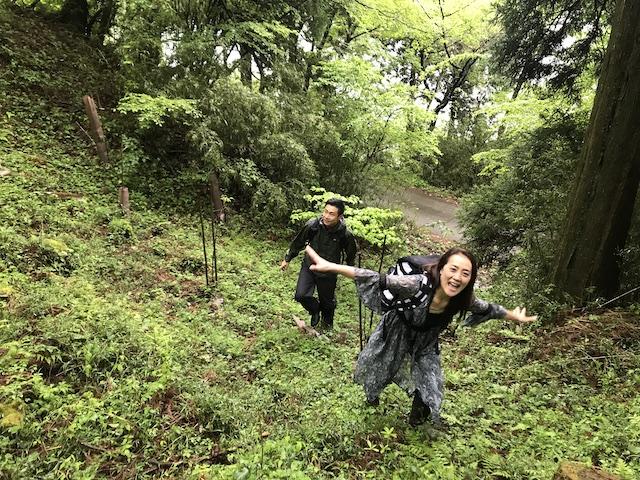 hakone_yasuraginomori_forest_1