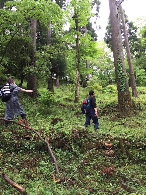 hakone_yasuraginomori_forest_16