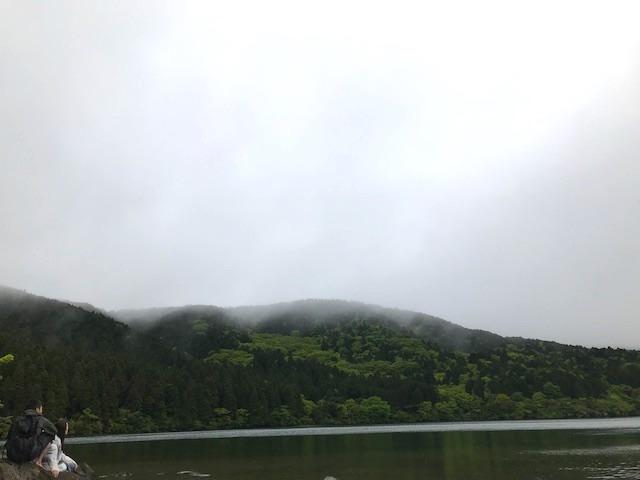hakone_yasuraginomori_forest_5