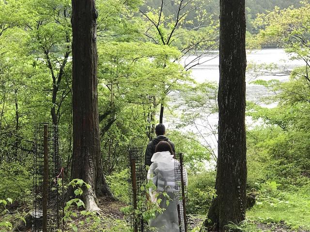 hakone_yasuraginomori_forest_6